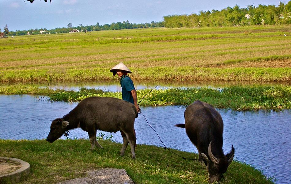 Honeymoon in wonderful Islands 10 days: From Phu Quoc Island to Ha Long Bay Vietnam